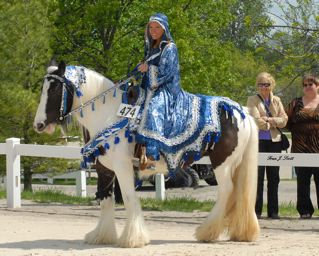 Photo copyright Fran J. Scott .remmepark.com & GHA - 2008 National Gypsy u0026 Drum Horse Classic Article