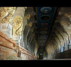 Rameswaram Temple (Pyngodan) Tags: temple corridor tamilnadu rameswaram s5 mywinners abigfave s5is