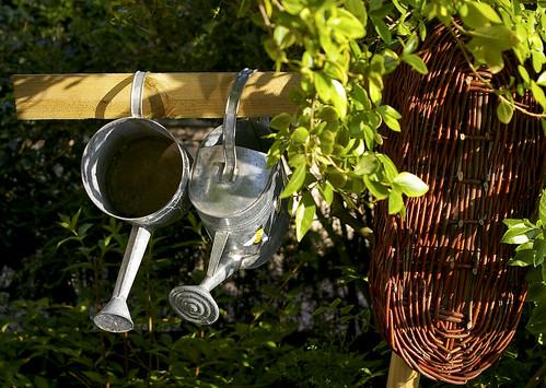 Economiser l'eau du jardin