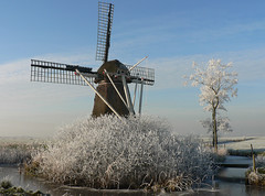 Frosty Mill (sydandsaskia) Tags: mist holland netherlands windmill rural countryside frost hoarfrost country friesland frysln freezingmist broekmolen broekmole netherlandswindmill sydandsaskia frostycountryside broeksterwoude broeksterwld frieslandwindmill broekpoldermole broekpoldermolen