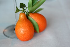 stem affection (shunafish) Tags: california winter stilllife orange color fruit bright seasonal delicious citrus component shape sour photosession whimsical aroma plateddessert leetle mandarinquats