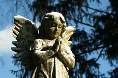 [フリー画像] [人工風景] [彫刻/彫像] [天使/エンジェル] [祈り/祈る]       [フリー素材]