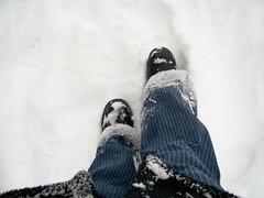 Nik's Snowy Day