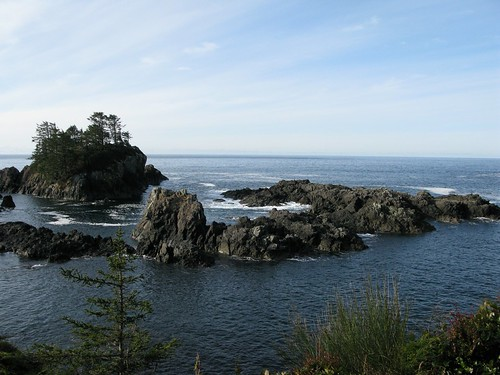 Wild Pacific Trial, Ucluelet, BC, Canada