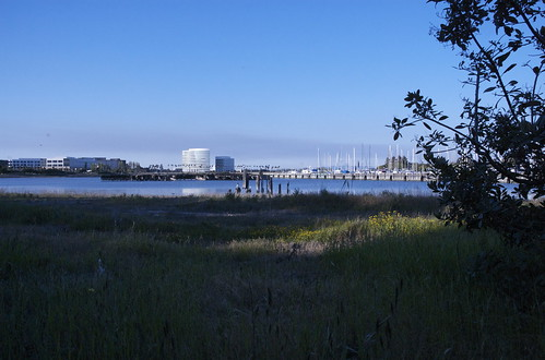 Inlet of the bay
