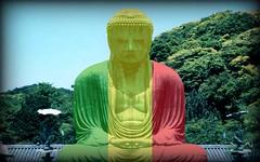 Rasta Buddha