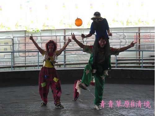 青青草原CIMG2761