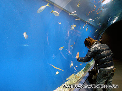 Japanese dude observing the fish