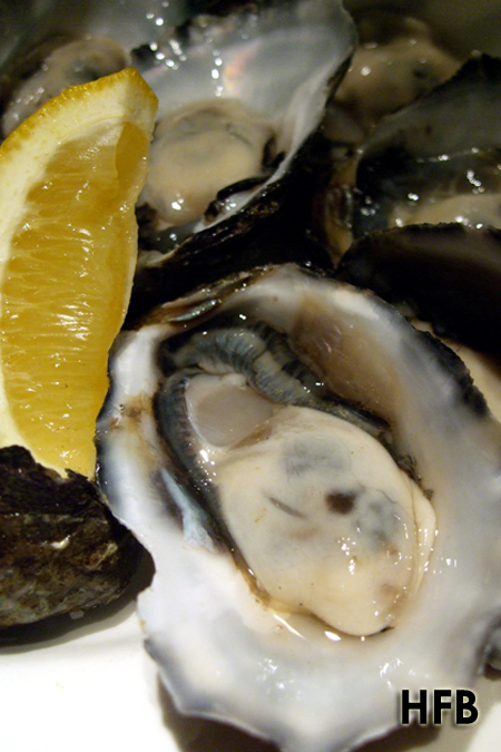 Oyster Bar, David Jones, Perth 01