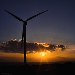 Windmills sunset (II) (