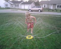 drink in the sprinkler