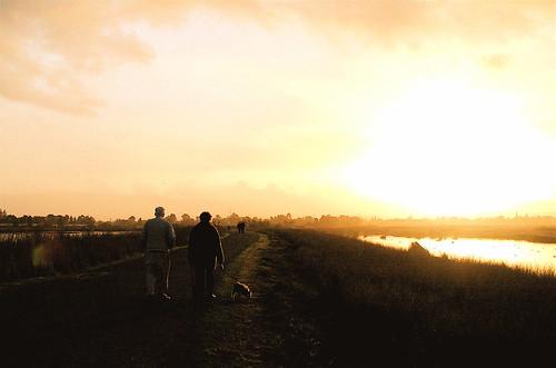 dog walkers at dusk