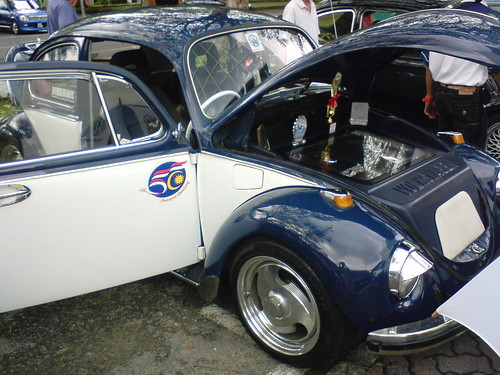 Blue/White Bug