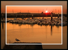 13767 LE HAVRE Warm sunset     (Rolye) Tags: sunset sky france reflection beautiful port wonderful soleil photo yahoo google fantastic flickr view shot superb photos shots live gorgeous famous sunsets www images best havre technorati views dreams excellent  extraordinaire normandie msn aol baidu thebest coucherdesoleil lehavre imagesgooglecom   flickrphotos      supershot yahoophotos remarquable colorphotoaward theperfectphotographer astoundingimage imagesyahoocom rolye portlehavre taggalaxycom expressyourselfaward francenormandielehavre