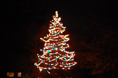 Merry Holidays.... (bethechange21) Tags: ohio tree cincinnati christmastree merrychristmas multicolor mariemont villlage makesyouhappy theygotitrightthisyear