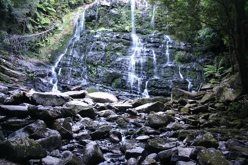 Nelson Falls, Central Tasmania.