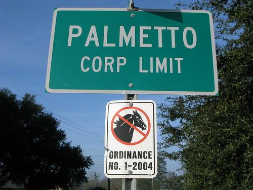 No horses in Palmetto, Louisiana, USA