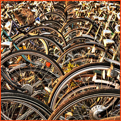 waves of bicycles (Frizztext) Tags: netherlands bike bicycle square geotagged lumix traffic bikes panasonic bicycles explore galleries barbara venlo fietsen limburg fiets fietser 500x500 100faves 50faves frizztext dmcfz50 colorphotoaward ysplix 240x240 20080214 winner500 photopolisurbanartisticimages