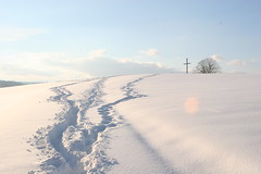 0005 (BabaFunGogh) Tags: schnee switzerland hgel schtz
