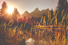 Golden Sunset (Ms Stacy) Tags: grandtetonnationalpark wyoming mountains sunset lake water matte