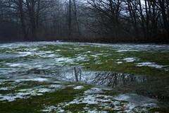 Haltestelle Lindenberg IMG_2219 (nb-hjwmpa) Tags: neubrandenburg tauwetter schneeschmelze lindenberg mecklenburg