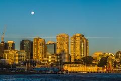 Moon over Milsons (Rakuli) Tags: ifttt 500px milsons point buildings city skyline moon sky sunset dusk waxing afternoon golden glow