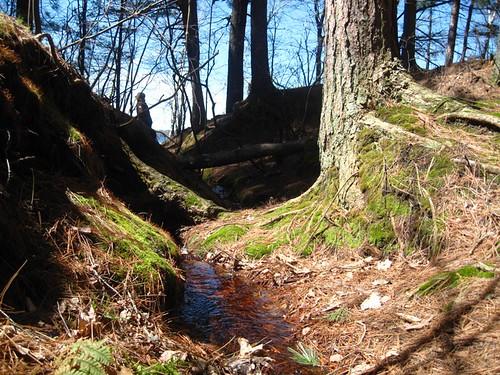 sweet spring streams...