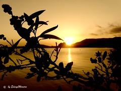 FINAL de TARDE,no BELO LAGO... (Edésyo Moreira, #UmPaisagista) Tags: sol lagoa pds entardecer canoeironativo minhasimagensoriginais
