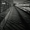 The Lines (Vincént) Tags: bridge 6x6 zeiss prague footbridge praha line hasselblad squareformat czechrepublic queer vincentvega 503cw monochromia canoscan9950f ilfordrapidfixer agfarodinal1100 vincént distagoncf504tfle fomafomapan400