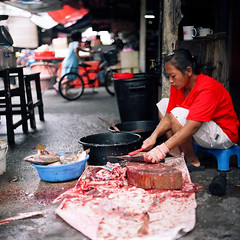 (*YIP*) Tags: food fish 120 6x6 film mediumformat square asian women kodak working cutting pro seafood sia expiredfilm occupations slicing kiev60 iso160 foodprocessing seafoodstore yipchoonhong