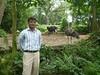 Singapore Zoo (gvalasai) Tags: singapore mithi diplo hec muet kaloi gordhan valasai tharparkar meghwar mehranuniversity