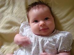 Sadie 10 weeks.