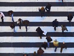 Pedestrians (varnaboy) Tags: street city people urban blackandwhite portugal walking lisbon stripes zebra pedestrians pace crosswalk zebracrossing stajusta lovelycity