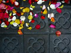 Carrer Paris (blopalanpor) Tags: barcelona street color colour calle day bcn dia carrer colourbarcelona