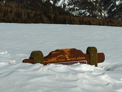 Buried by the snow (SLV Native) Tags: snow newmexico colorado cumbrestoltec caminosantiguos absolutelystunningscapes