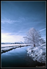 River Frome Infra Red. (numanoid69) Tags: longexposure winter cold reflection water river ir frosty gloucestershire infrared icey hoyar72 riverfrome nikond300