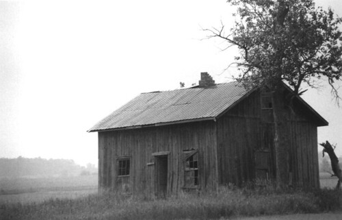 Old Homestead #1