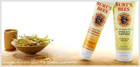 2432178894 76119356eb o Physical sunscreens: Burts Bees vs Badger