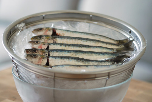 sardines on ice - cookthink