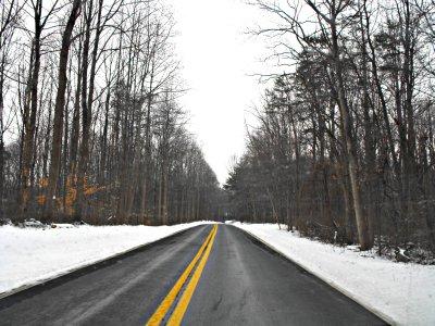 winter wonderland 5 blog