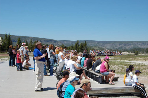 old faithful onlookers