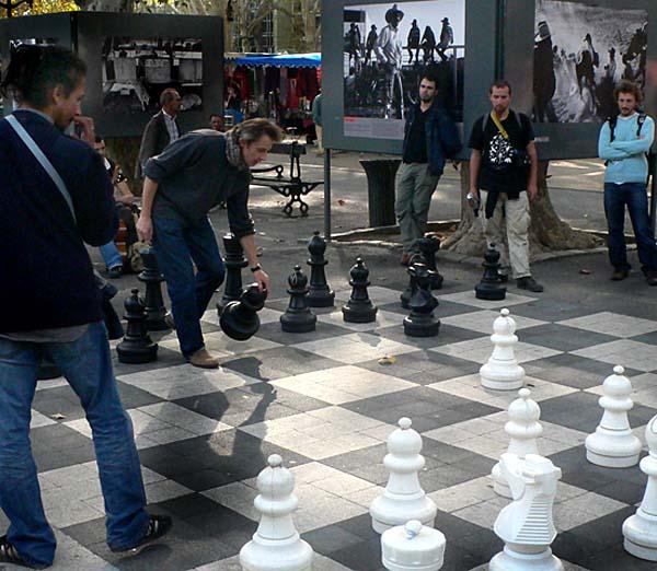 chess-montp2-40457