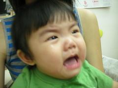 DSCN1789 (sasawong) Tags: bb cuties