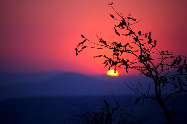 evening at a hilltop-1...
