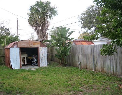 Backyard - Back Corner and Shed