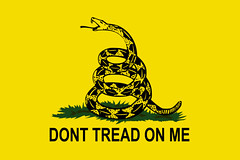 dont-tread-on-me-gadsden-flag
