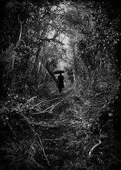 (Kirsty Mitchell) Tags: trees girl forest umbrella self lost dawn woods magic melancholy storybook makeawish ixtlan absolutelyfreezingcold kirstymitchell andnowalittlemakebelieve