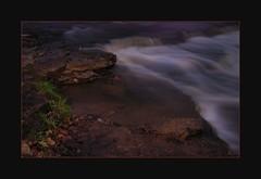 pit-stop (Ben Pinkart) Tags: fish stream flashlight swimmingupstream 1minuteexposure