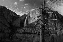 Yosemite Upper & Lower Falls (After Dark Photo) Tags: blackandwhite bw mountains nature landscape waterfalls yosemite sierranevada yosemitevalley yosemiteupperfalls yosemitelowerfalls