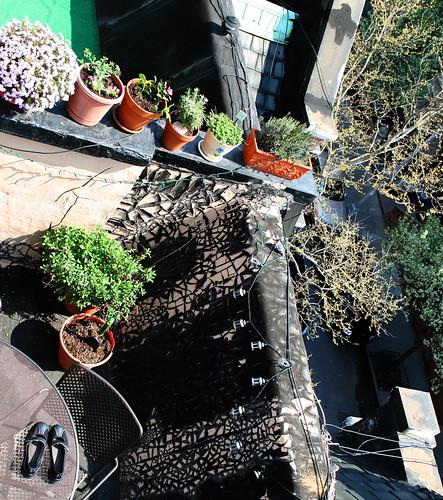 Terrace Garden from above by AlisonLOL